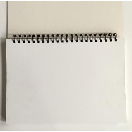 Альбом для рис. и эскизов А5 40л белый блок 160гр, спираль, тв. подлож7415 37856321 1