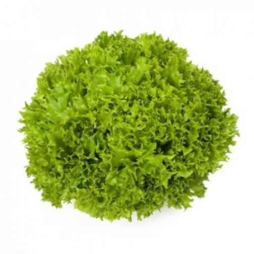 Семена салата Экзакт : 5000 шт 36986082