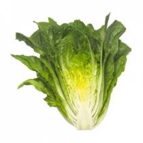 Семена салата Максимус : 20шт