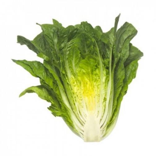 Семена салата Максимус : 20шт 36986209