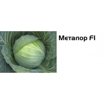 Семена капусты белокочанной Металор F1 - 2500шт