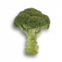 Семена капусты брокколи Агасси F1 : 10шт