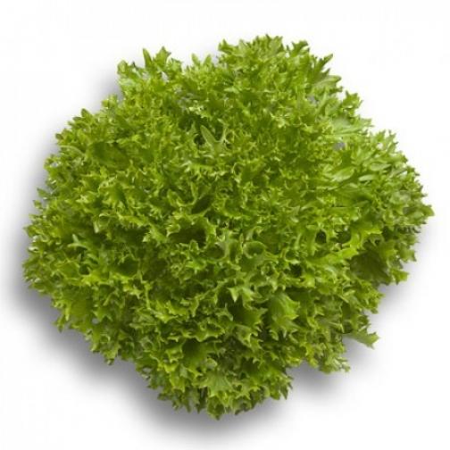 Семена салата Экпертайз : 5000 шт 36986098