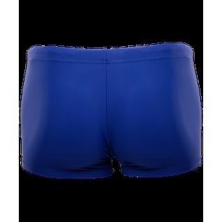 Плавки-шорты Colton Ss-2984 Simple, детские, синий, 36-42 размер 42