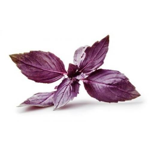 Семена базилика Рози : 1гр 36986177