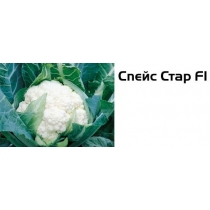 Семена цветной капусты Спейс Стар F1 - 2500шт