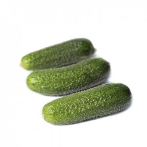 Семена огурца Трилоджи F1 Райк Цваан 10 шт 36986048