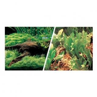 Hagen Фон Японские растения/Свежая вода 30см 7,5 м