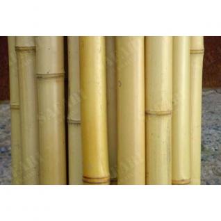 Ствол бамбук 60-70 мм обожженный 2.5-3 м