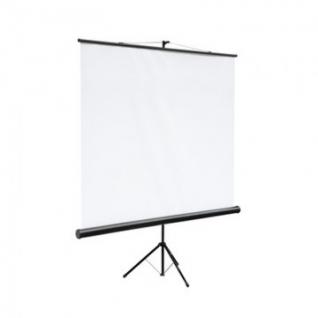 Экран Digis DSKC-1102 мобильный 1:1, 180х180