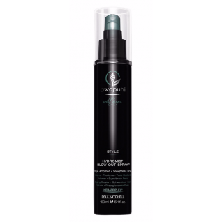 Hydromist Blow-Out Spray Paul Mitchell