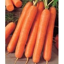 Семена моркови Ройал Форте F1 - 1кг