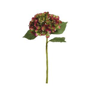 Гортензия FIEBIGER FLORISTIK 56см розовый зеленый