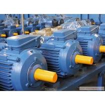 Электродвигатель АИР 0,55 квт * 3000 об/мин