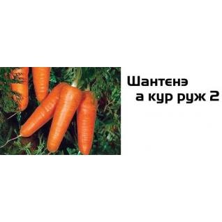 Семена моркови Шантене а кур руж 2 - 100 000шт