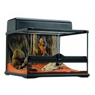 Hagen Террариум из силикатного стекла, 45 x 45 x 30 см