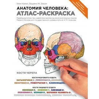 Уинн Кэпит, Лоуренс М. Элсон. Анатомия человека: атлас-раскраска, 978-5-699-71506-0