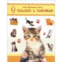 Коэ Н.. Книга Моя большая книга о кошках и котятах, 978-5-389-10314-618+