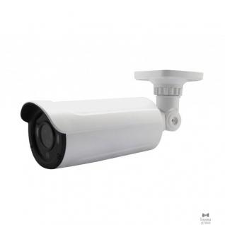 """Falcon Eye Falcon FE-IPC-BL200PVA 2Мп уличная IP камера; Матрица 1/2.9"""" SONY CMOS; 1920x1080p*25k/c; Дальность ИК подсветки 40-50м; Объектив f=2.8-12мм;Аудио вх; Вх тревоги; microSD; ICR"""
