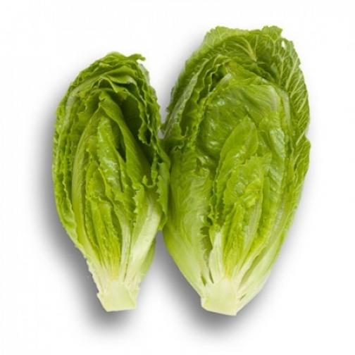 Семена салата Кранчита : 5000шт 36986079