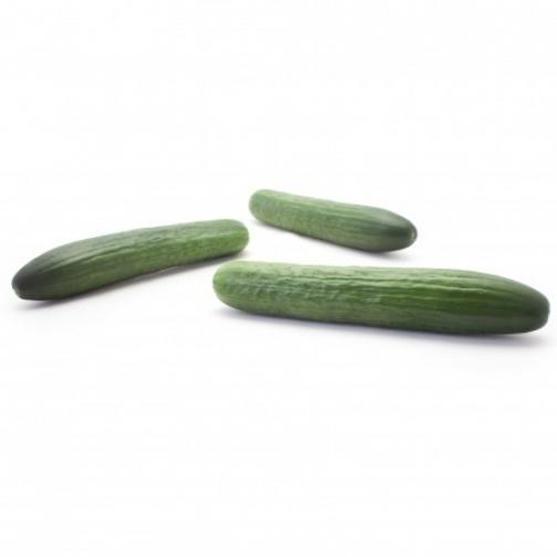 Семена огурца Яни F1 - 1000шт 36986143