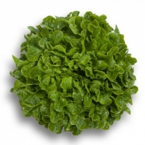 Семена салата Гумбольд : 20шт