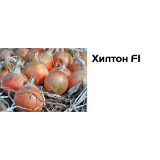 Семена лука репки Хилтон F1 - 250 000 шт