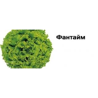 Семена салата Фантайм - 2500шт