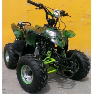 Avantis Pilot 110cc