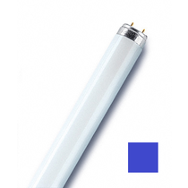 OSRAM Люминесцентная лампа OSRAM L 18W/67 T8 G13 590 мм синяя