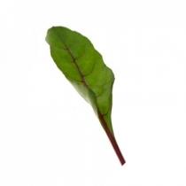 Семена мангольда Чарли : 100 000шт