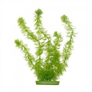 Hagen Растение пластиковое зеленое Роголистник 13 см