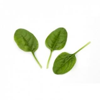 Семена шпината Зебу : 100 000шт