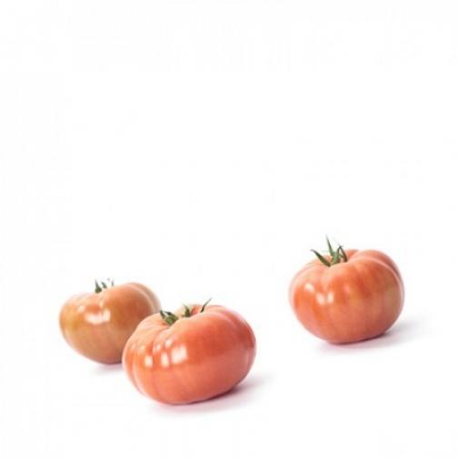 Семена томата Ладога F1 : 100 шт 36986174