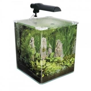 Hagen Аквариум Fluval Flora 30 литров (35 x 30 x 30 cм)
