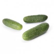 Семена огурца корнишона Кибрия F1 - 1000шт