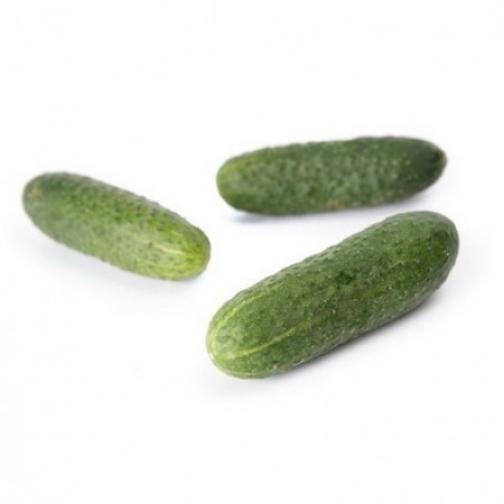Семена огурца корнишона Кибрия F1 - 1000шт 36986073