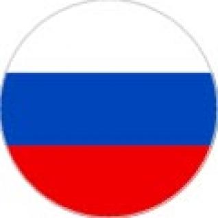 """Пластина шунгитовая для телефона круглая """"Флаг России"""" диаметр 20 мм"""