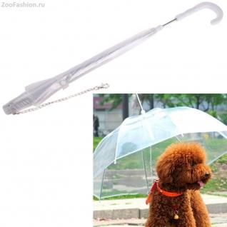 Зонт для собак ( )