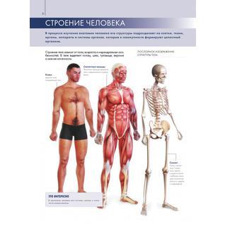 Габриэль Билич. Книга Анатомия человека: большой популярный атлас, 978-5-699-72585-418+