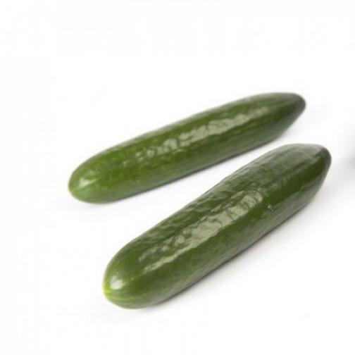 Семена огурца Мева F1 - 1000шт 36986132