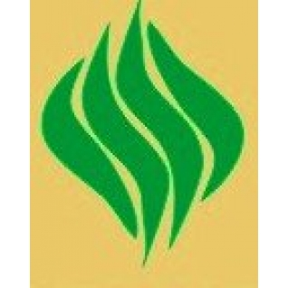 Семена фестулолиума, семена трав
