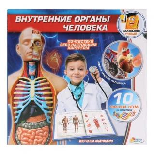 """Игрушка Опыты """"Играем Вместе"""": Внутренние Органы Человека В Русс."""