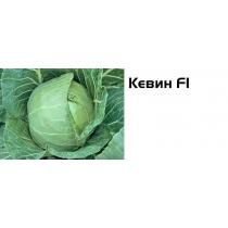 Семена капусты белокочанной Кевин F1 - 2500шт