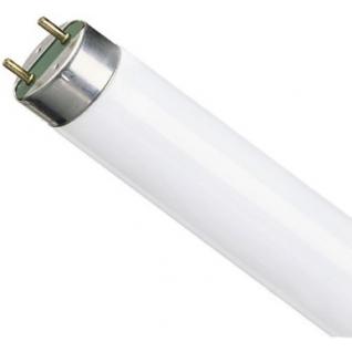 Лампа люминесцентная Osram L36W/640