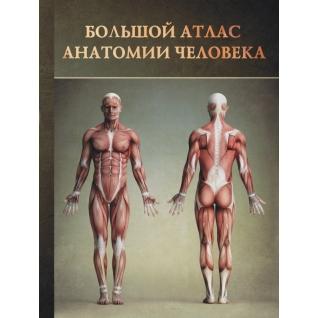 Винсент Перез. Книга Большой атлас анатомии человека, 978-5-271-46019-7, 978527146019718+