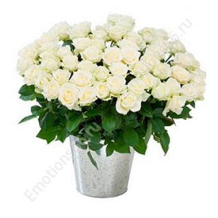 Розы 25 штук 80 сантиметров