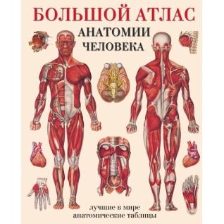 Махиянова Е.Б.. Книга Махиянова. Большой атлас анатомии человека, 978517041806018+