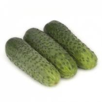 Семена огурца корнишона Караоке F1 - 1000шт