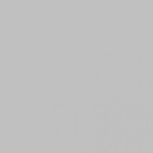 Керамогранит MC 611П мышиный Полированный 600x600 5593147